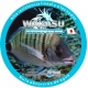 TURKANA NYLON WAKASU CLEAR 3000 M PROMO