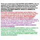 SENSAS PEARL PFTE SPECIAL ELASTIC KIT FIGHTING (STRIPPA)