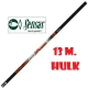 SENSAS POLE ROD H_ POWER CARP 55