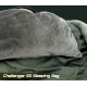 challenger 5s sleeping bag