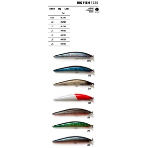 VEGA AKADA BIG FISH