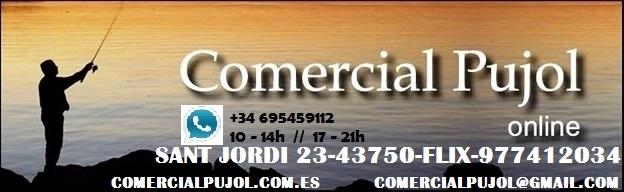 COMERCIAL PUJOL (FLIX)